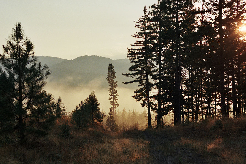 Mountain Morning Kodak Portra ©Gerik Parmele 2014